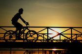 Silhouette of biker on Bridge — Stock Photo