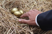 Businessman showing to golden egg from nest — Stock Photo