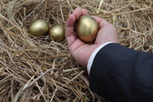 Businessman holding golden egg from nest — Stock Photo