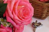 ピンクのバラの花 — ストック写真