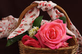 Still life of pink rose flower in basket — Stock Photo