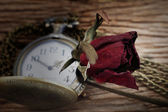 Dried roses and pocket watch on wooden — Stock Photo