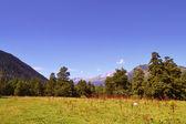 горный ландшафт в послеобеденное время. — Стоковое фото