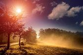 霧の朝 — ストック写真