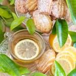 Постер, плакат: Lemon madeleines with tea