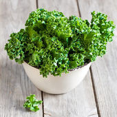 Kale — Stock Photo