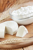 Dairy products and grains — Stock Photo