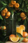 Mandarine and orange juice — Stock Photo
