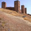 Molina de Aragon Castle — Stock Photo #39346681
