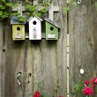 Flower garden birdhouses on a rustic fence — Stock Photo