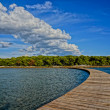 Wooden walkway leading into the horizon. clouds mirroring the s — Stock Photo #39146997
