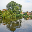 Stock Photo: Weeping willow on river bed of Shrewsburry England, UK. HDR