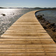 Wooden walkway leading into the horizon — Stock Photo #39149479
