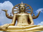 Sitting Buddha in gold - Wat Phra Yai — Stock Photo