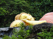 Sleeping golden buddha lying in the jungle. closeup — Stock Photo