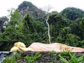 Sleeping golden buddha lying in the jungle — Stock Photo