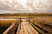 Wood boardwalk leading to a saline — Stock Photo