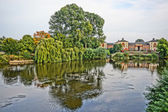 Weeping willow on the river bed of Shrewsburry England, UK. HDR — Stock Photo