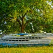 Old derelict wooden boat under a tree. HDR picture — Stock Photo