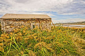 Stone house in between reed. HDR picture — Stock Photo