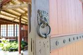 Aslan kapı tokmağı veya kapı topuzu — Stok fotoğraf