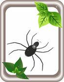 паук и весной лист — Cтоковый вектор