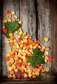 Cloudberry — Stock Photo