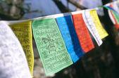 Tibet dua bayrakları — Stok fotoğraf
