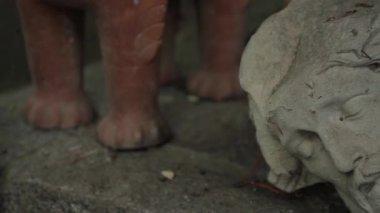 Stonehead Бога — Стоковое видео