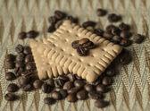 Koffie en cookie — Stockfoto