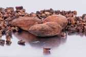 Chocolate cocoa beans isolated on white background — Stock Photo