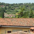 Scenic view over small italian village and hill side — Stock Photo #40418541