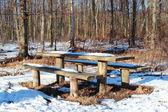 Wooden forest table in winter with snow — Stock Photo