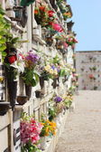 Cemetery for urns in italian village with flowers — Stock Photo