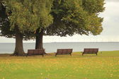 Three benches in a park with a view to the ocean — Stok fotoğraf
