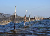 Perspective view of fishing net mounted to wooden poles — Foto Stock