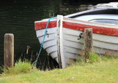 Rowing boat in water at grass field — Stock fotografie