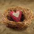 One handmade heart in the nest — Stock Photo