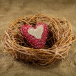 Stock Photo: One handmade heart in the nest