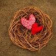Stock Photo: Knitting hearts in nest