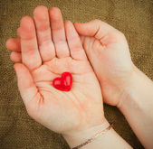 Red heart in the hands — Stock Photo