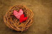 Knitting hearts in the nest — Stock Photo