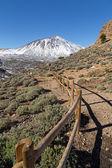 Teide Volcano — Stock Photo