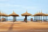Beach umbrellas & sun loungers on the beach — Stock Photo