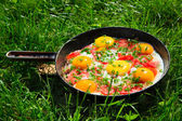 Pan with eggs, green onions and tomatoes on the green grass — Stock Photo