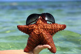 Starfish with glasses in girl hand — Stock Photo