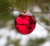 雪で覆われたクリスマス ツリーに掛かっているつまらないもの — ストック写真