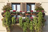 Groen balkon — Stockfoto