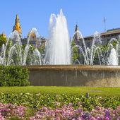 Placu Katalonii — Zdjęcie stockowe