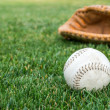 Stock Photo: Old baseball in the grass